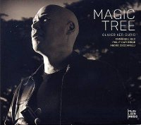 Olivier KER OURIO : « Magic Tree » -  voir en grand cette image