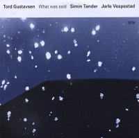 Tord GUSTAVSEN : « What was said » -  voir en grand cette image