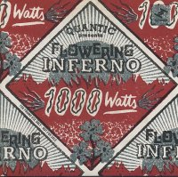 QUANTIC presenta FLOWERING INFERNO : « 1000 Watts » -  voir en grand cette image