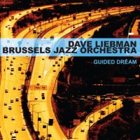 BRUSSELS JAZZ ORCHESTRA DAVE LIEBMAN - Guided dream -  voir en grand cette image