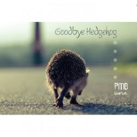 PMB Quartet : « Goodbye Hedgehog » -  voir en grand cette image