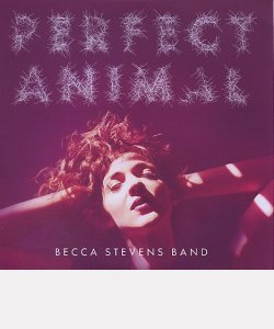 "Becca STEVENS Band : ""Perfect Animal"""
