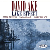 David AKE : « Lake Effect » -  voir en grand cette image